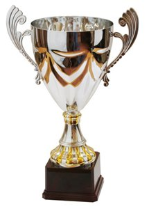 Кубок признания