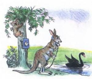 А вчера поутру кенгуру