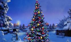 Новогодние стихи про елку
