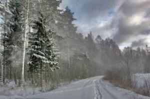 загадки зимние про февраль для детей