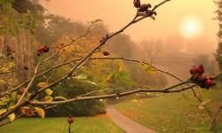 7 лучших детских песен про осень