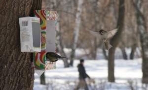 как сделать кормушку для птиц из пакета