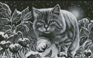 снежный кот в лесу
