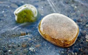 загадки на смекалку с ответами. Камни