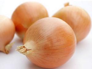 загадки про овощи. лук