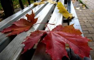 стихи про осень сентябрь