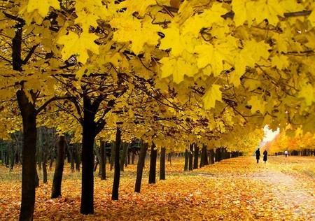 загадки про осень слякоть