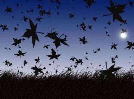 загадки про осень листопад