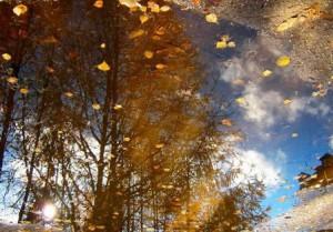 загадки про осень ветер
