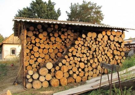 На весну надейся, а дрова припасай