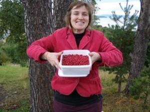 сбор ягод в лесу