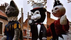 кошачий фестиваль