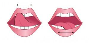 Упражнение 2. Чистим верхние и нижние зубы