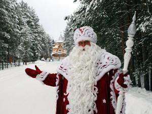 Дед Мороз в ЦДМ