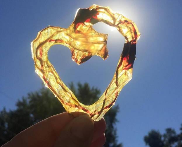 солнечное сердечки из плаценты