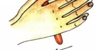как сделать пластилиновую колбаску